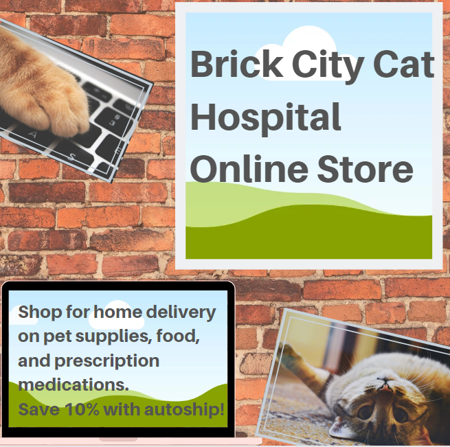Brick City Cat Hospital Online Store link